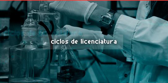 Ciclos de Licenciatura