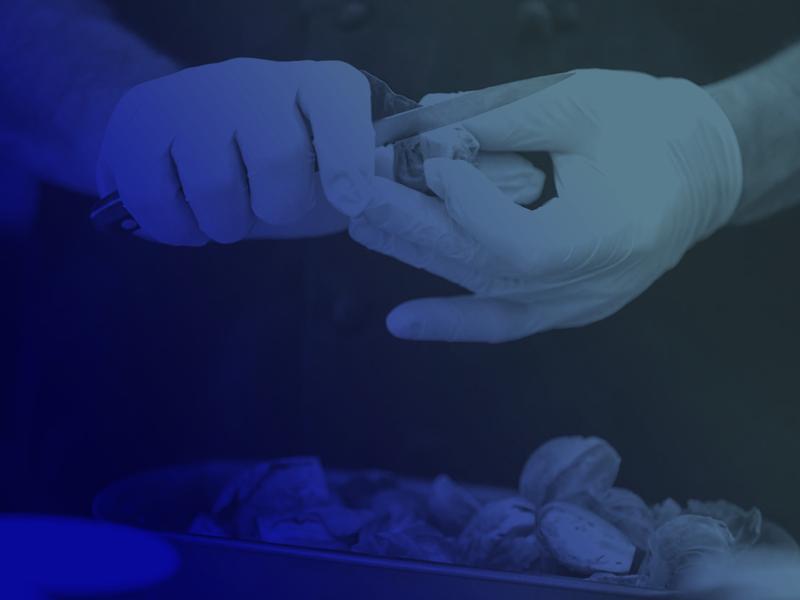 Tecnicatura en Higiene y Seguridad Alimentaria