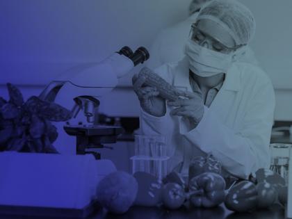 Curso de Formación Profesional Auxiliares de Laboratorio: Microbiología de los Alimentos