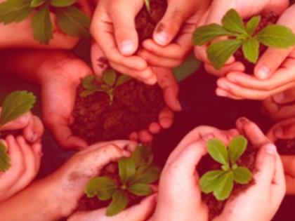 Derechos de la Naturaleza. Un abordaje teórico, práctico e interdisciplinar