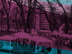 Economía Social y Solidaria y Desarrollo Local
