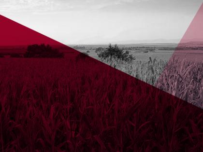 Curso de Actualización: Tasaciones agropecuarias