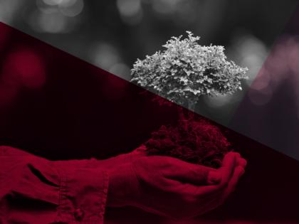 Curso de Actualización: Derechos de la Naturaleza. Un abordaje teórico, práctico e interdisciplinar