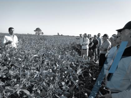 Agronogocios: Pautas básicas y desafíos futuros